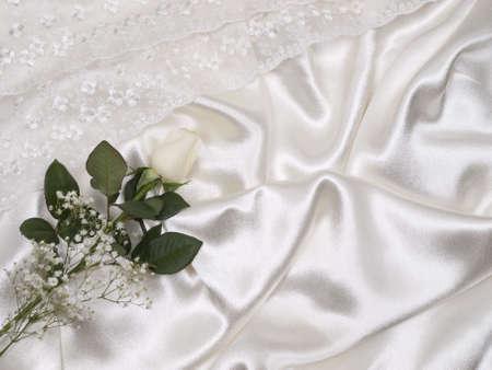 White  rose on a background white silk