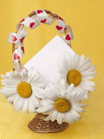 Card for text and camomile in a small basket photo