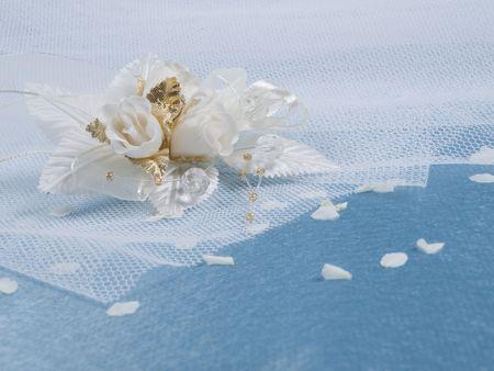 buttonhole: Weddings accessorie a buttonhole  on a blue background