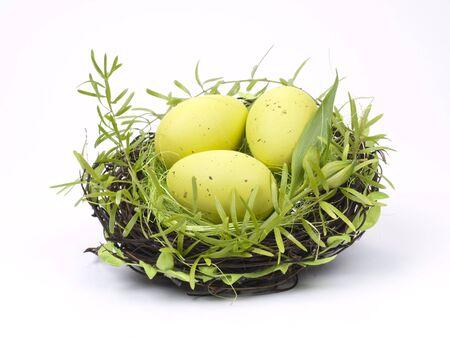 Easter Eggs in einem Nest auf wei�em Hintergrund