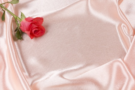 Beautiful rose on a background pink silk photo