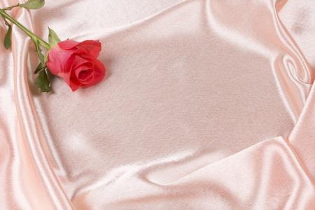 Sch?Rose im Hintergrund rosa Seide