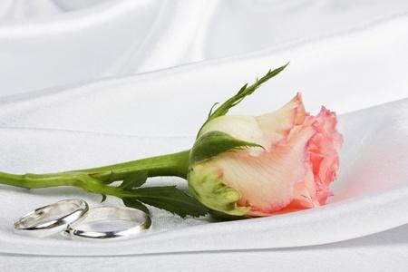 Beautiful rose on a background white silk photo