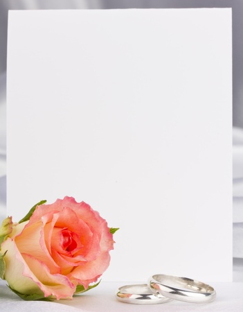 Beautiful rose and card for your text on a background white silk Stock Photo