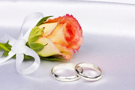 Beautiful rose and wedding rings  on a background white silk