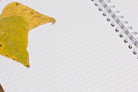 Opened school notebook and yellow autumn leaves Stock Photo - 10344699