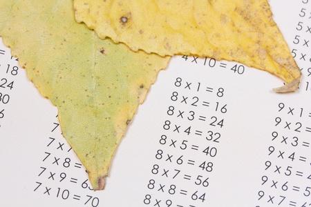 multiplicacion: las tablas de multiplicar y las hojas amarillas de oto�o