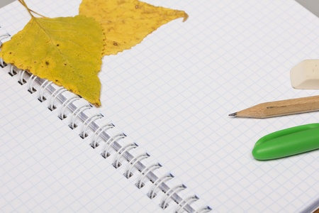 Opened school notebook and pencil, pen, eraser, leaves Stock Photo - 10413778
