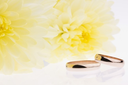 Yellow flowers and gold wedding rings Stock Photo