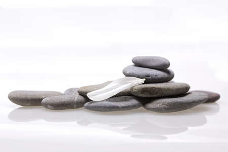 plainness: Sea smooth stones and white petal