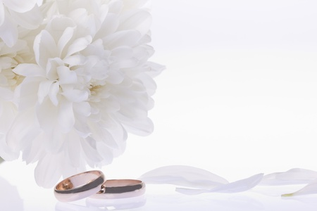 White flowers and gold wedding rings Stock Photo