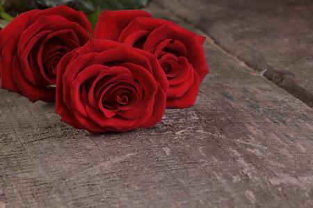 roses rouges: Trois roses rouges sur un fond en bois