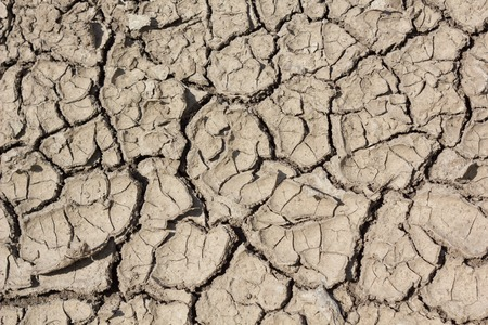barrenness: Crack on ground as a result of drainage and soil erosion Stock Photo