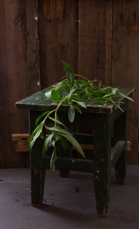 stool: Vintage still life with wild plants and stool
