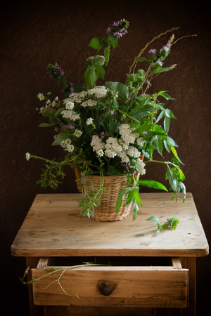 nightstand: Vintage still life with wild plants and on a nightstand Stock Photo