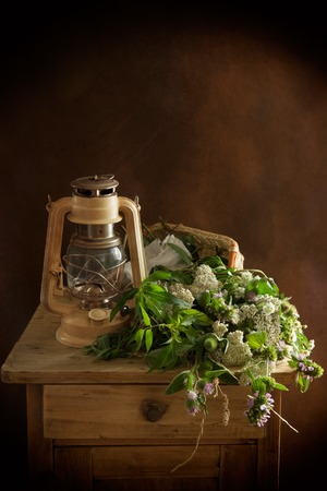 Vintage still life with wild plants and on a nightstand Stock Photo