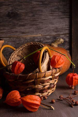 winter cherry: Autumn background with winter cherry and pumpkin