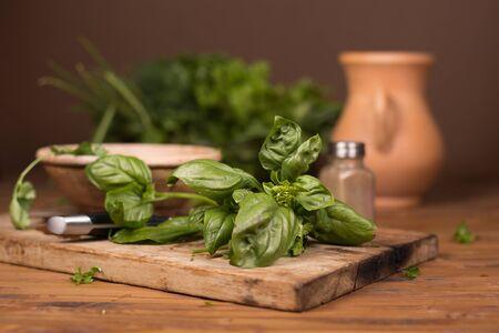grass cutting: Fresh green spices on dark kitchen cutting board
