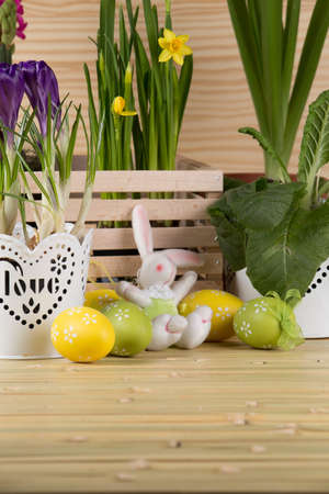 Beautiful easter background with fresh spring flower