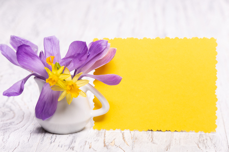 Bright fresh spring flowers on a white wooden background