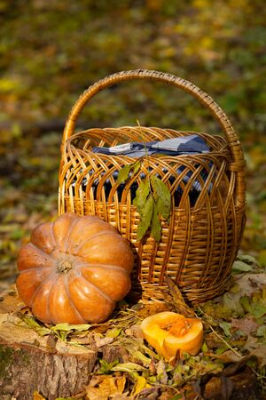 Autumn still life with orange pumpkins and yellow leaves