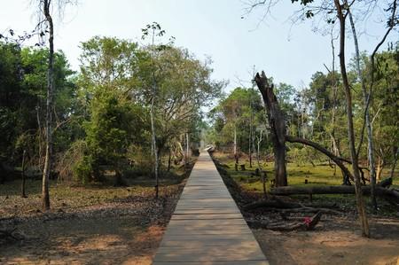 footbridges: The path Stock Photo