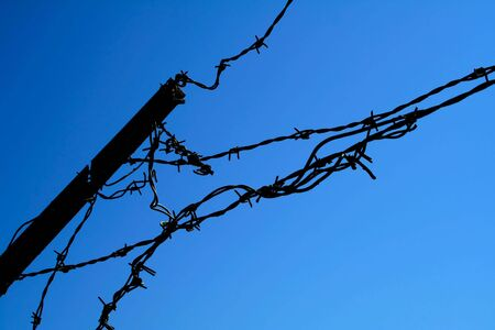 Barbwire on blue photo