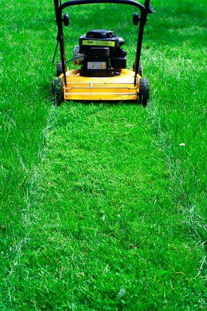 Lawn mower trail photo