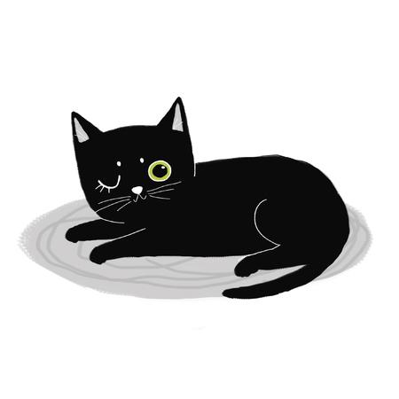 black cat sleeping on the carpet Stock Photo