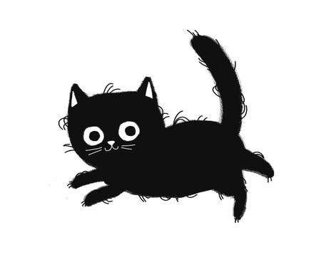 black shaggy cat flies