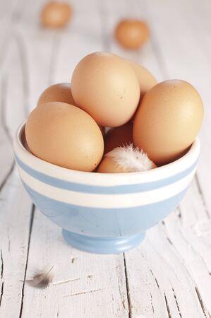 fresh egg Stock Photo - 15251367
