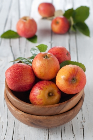 Fresh sweet apple on the table Stock Photo - 15313101
