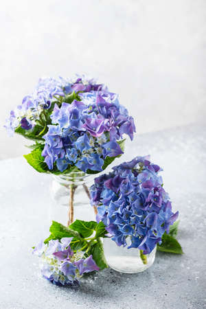 Greeting card concept. Amazing blue hydrangea flowers on the light table. Selective focus and close up image