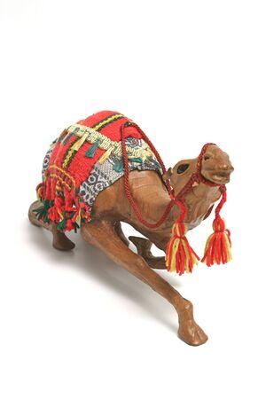 camel over white photo