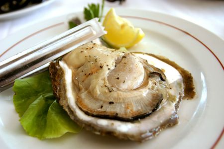 sours: Huge Croatian oyster served and ready to eat