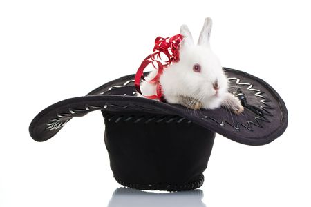 Fluffy little white rabbit over white with a red ribbon. photo