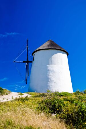 A sandy path surrounded by green flora leading to a windmill Stock Photo - 6716474