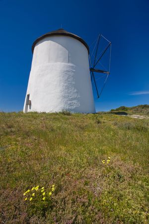 A view of a windmill from the side with sunny blue skys behind it and green grass and yellow flowers below it. Stock Photo - 6716536