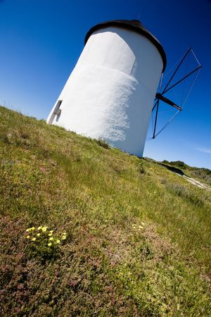 Looking up at a windmill from a diagonal view, with clear blue skies in the background and a foreground of lush greenery Stock Photo - 6716555