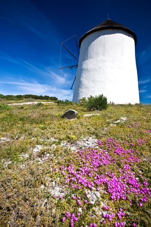 A shot of a windmill on a summers day with beautiful blue skies in the background and purple flowers in the foreground Stock Photo - 6716562