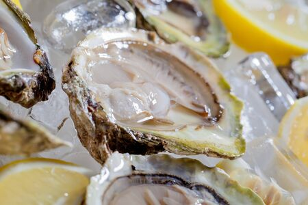 Opened oysters with lemon in ice bowl being served  photo