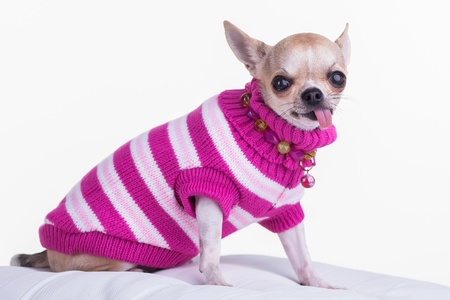 accessorize: Dark and light pink sweater with accessorize around the neck.