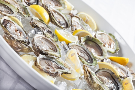 Oysters in a bowl with ice and lemon. photo