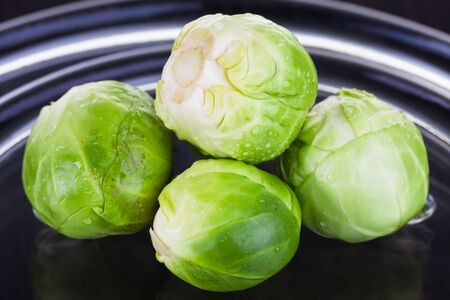 Four very small lettuce is served for art photography  Stock Photo - 15328668