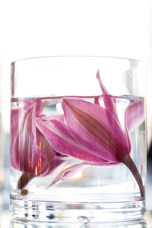 Two lillies under water in a glass vase.
