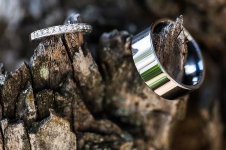 bodas de plata: la novia y el novio anillos de bodas de plata que descansa sobre una antigua corteza de árbol detallado