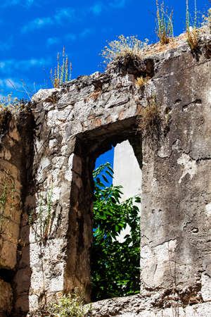sightsee: image of an old broken stone building with plants showing through the window frame