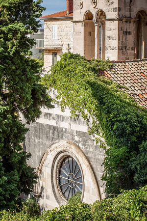 a view of an old stone churches rooftop with tendrils growing thickly over the tiles