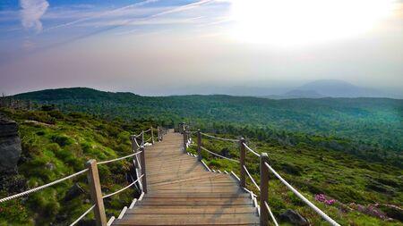Dans le parc national de Hallasan en Corée
