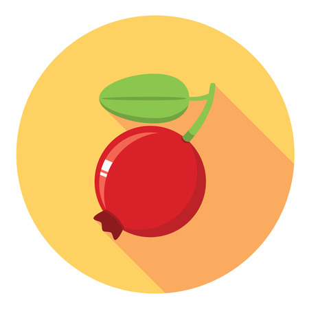 foxberry: Cranberry Ripe And Juicy Flat Style Design Icon Illustration